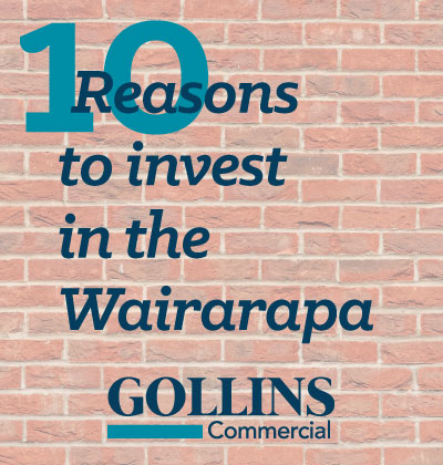 10 Reasons To Invest In The Wairarapa