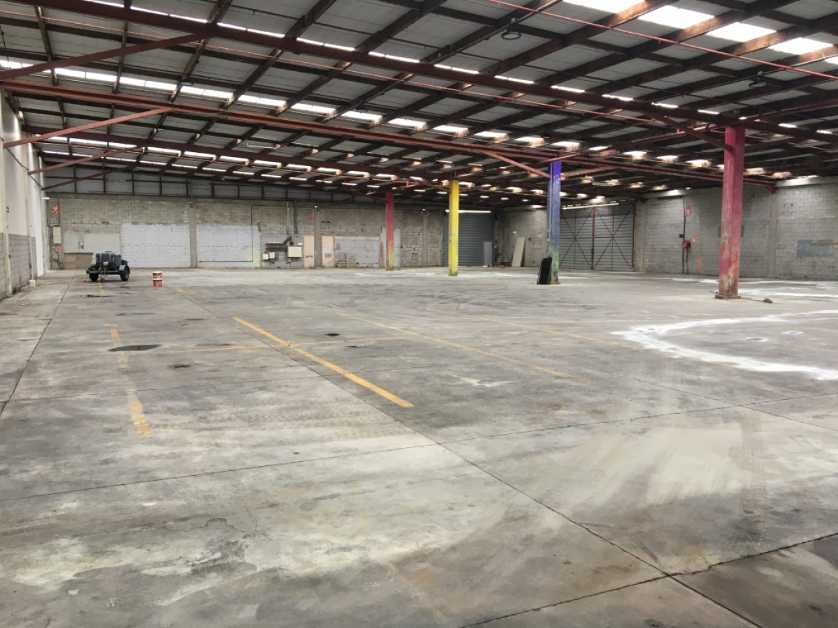 81-87 Port Road, Seaview, Lower Hutt, ,Industrial,For Lease,Port,1296